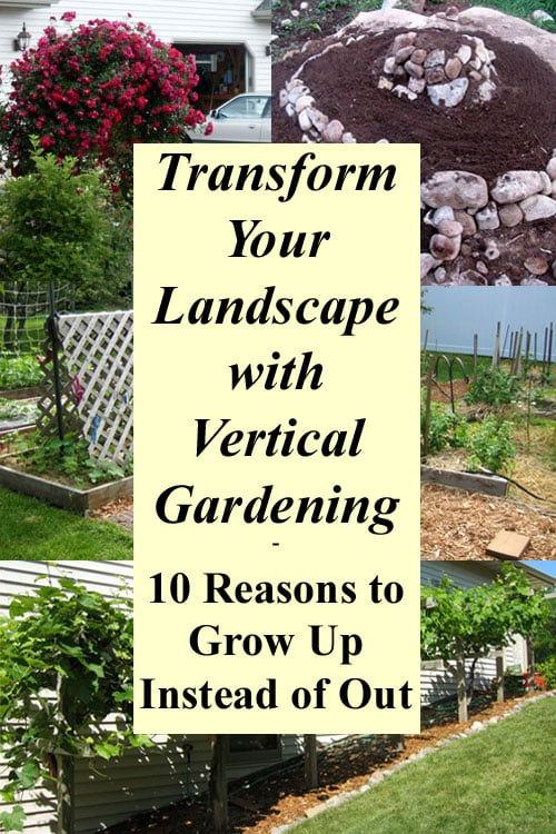 Transform Your Landscape with Vertical Gardening - Grow More Food in ...