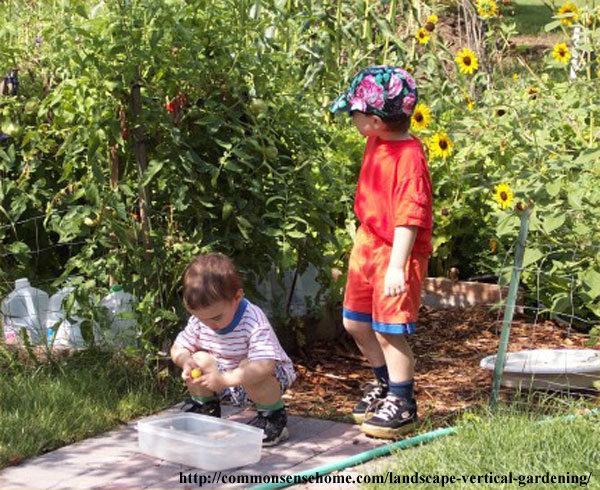 Little garden helpers.
