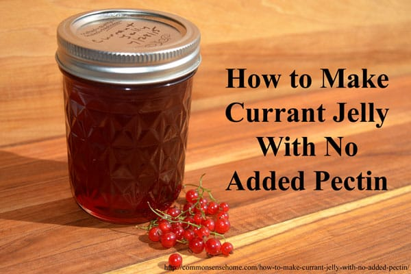 How to Make Currant Jelly with No Added Pectin. This easy homemade jelly recipe has just two ingredients and is perfect for beginning canners.