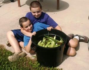 boys and corn