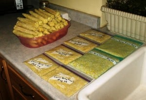 processed corn