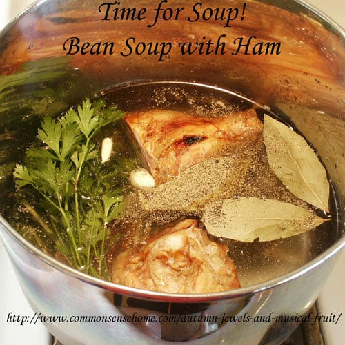 Bean Soup with Ham recipe @ Common Sense Homesteading