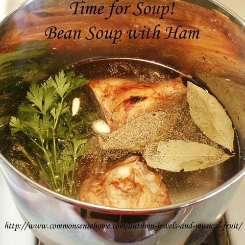 Bean Soup with Ham recipe @ Common Sense Homesteading
