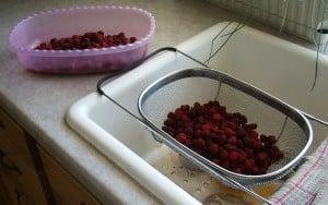 rinsing raspberries