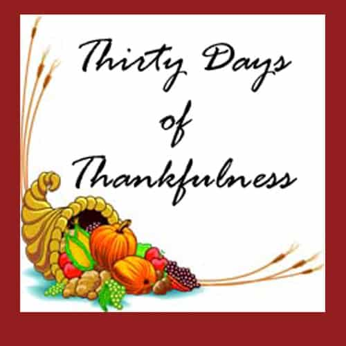 Thirty Days of Thankfulness - giving thanks for all our blessings, big and small.
