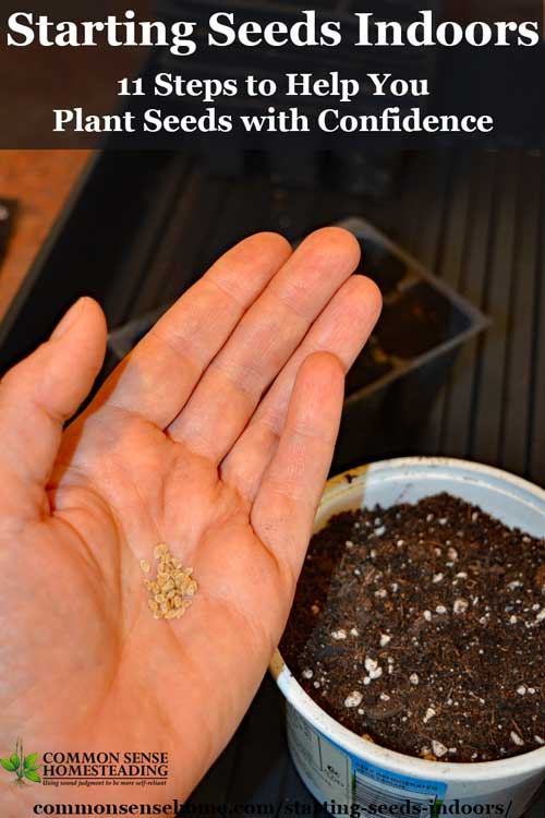Starting seeds indoors is easy, as long as you follow a few basic steps when you plant your seeds and care for your seedlings.