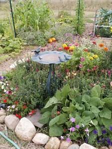 birdbath and flowers