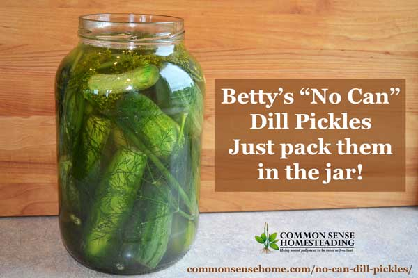 It doesn't get any easier than Betty's no can dill pickles. Just pack them in a jar, cover with brine, and in 3 days you have crunchy, delicious pickles.