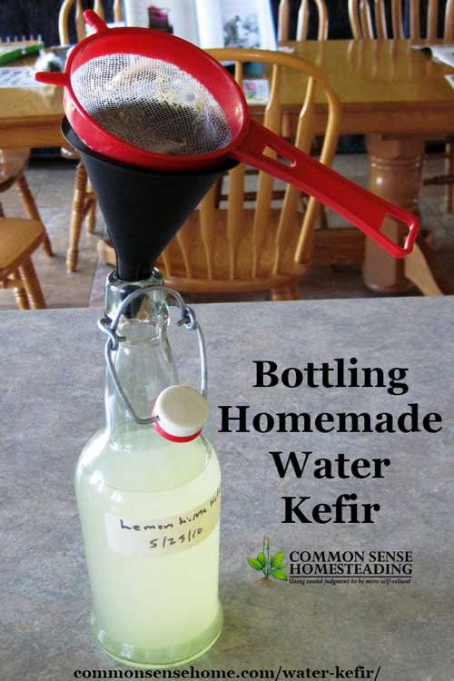 how to make water kefir at home