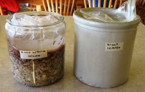 salt water on sauerkraut