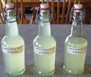 water kefir bottled