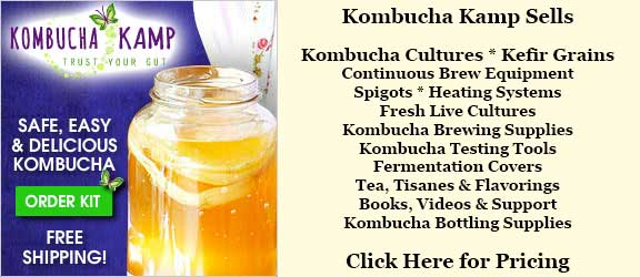Order Fresh Live Kombucha and Water Kefir Cultures and Brewing Equipment