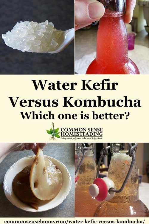 Water Kefir versus Kombucha - Comparison of water kefir and kombucha, their microorganisms, flavors, brewing techniques and effects in the body.