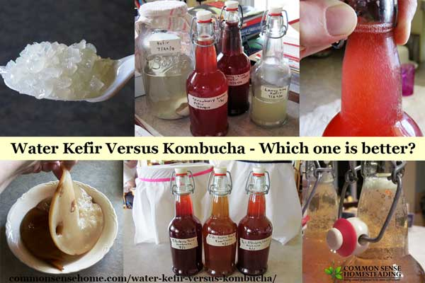 Water Kefir Versus Kombucha - Which one is better?
