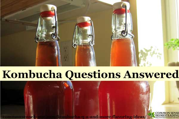Answers to common kombucha questions from readers including kombucha storage, flavoring and avoiding kombucha explosions.
