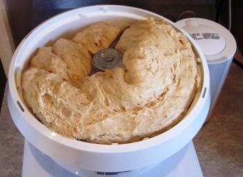 bun dough rising
