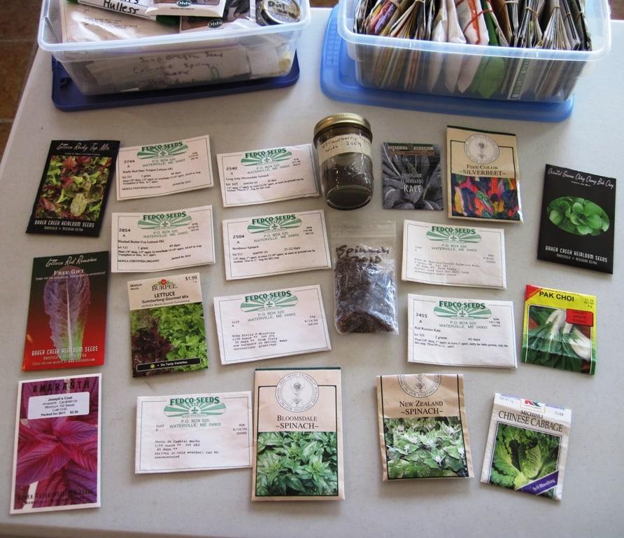 green seeds 2011