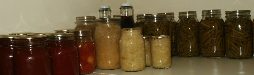 Food Storage without Electricity @ Common Sense Homesteading