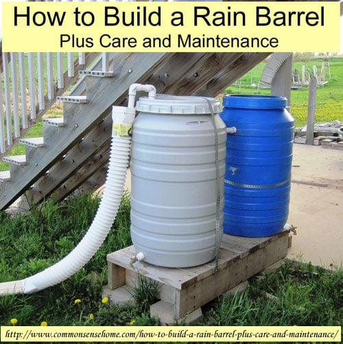 How to build a rain barrel plus care and maintenance for How to build a rainwater collection system