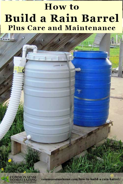 How to build a rain barrel plus care and maintenance for Making rain barrel system