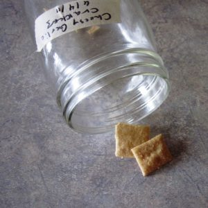 Cheesy Garlic Sourdough Crackers @ Common Sense Homesteading