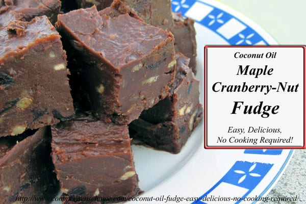 Easy coconut oil fudge recipe features coconut oil, nuts, cocoa powder, maple syrup or honey plus dried fruit. Loaded with healthy fat and antioxidants.