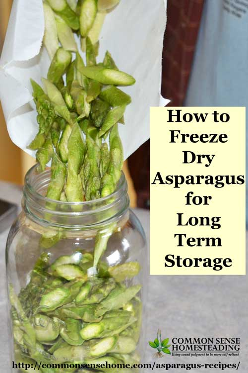 Over 25 creative asparagus recipes for soups, salads, sides and main dishes, plus 4 ways to store asparagus - freezing, drying, freeze drying and fermenting