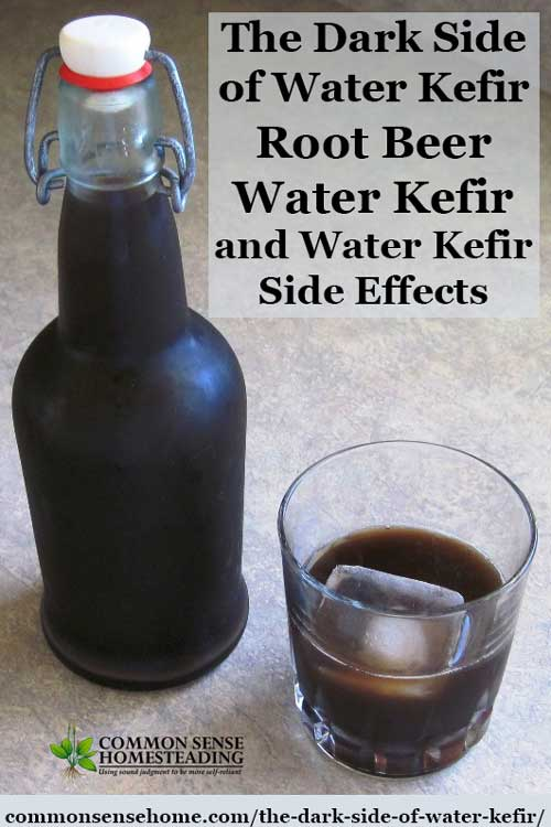 Swell The Dark Side Of Water Kefir Root Beer Water Kefir And Machost Co Dining Chair Design Ideas Machostcouk