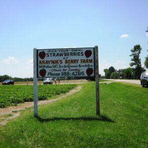kraynik's berry sign 2