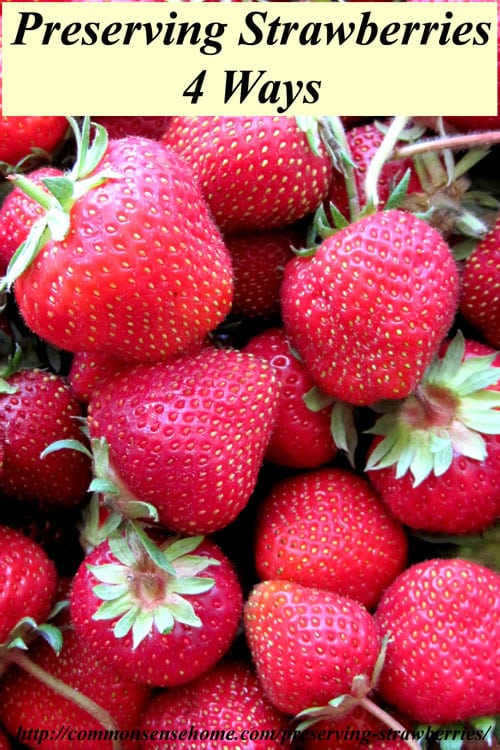 Preserving Strawberries by Freezing Preserving Strawberries Four