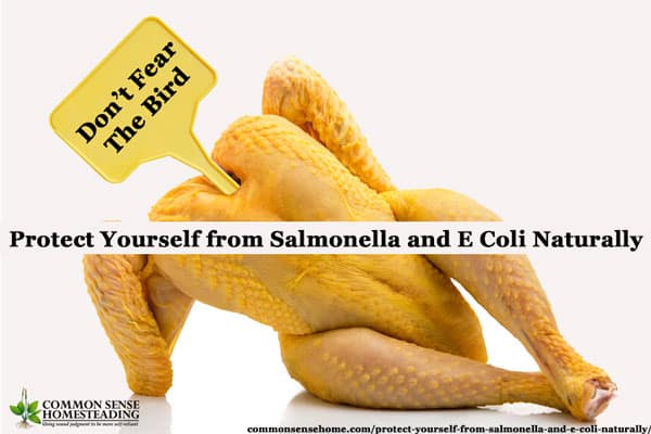 Protect Yourself from Salmonella and E Coli Naturally by building a strong immune system, practicing food safety and using herbs for treatment.