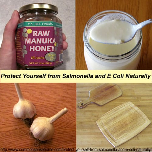 Protect Yourself from Salmonella and E Coli Naturally by building a strong immune system, practicing food safety and using herbs and honey for treatment.