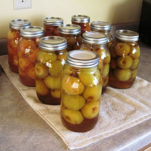 spiced crabapples and honey cinnamon crabapples