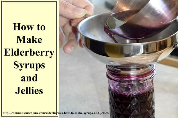 10 Easy Herbal Gifts to Enjoy Now, Plus One Gift That Lasts All Year Long - How to Make Elderberry Syrups and Jellies with Fresh or Dried Elderberries