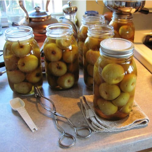 Pickled Cinnamon Apple Rings