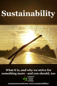 """wiper blade clearing window with sun shining through rain, """"Sustainability"""" text"""