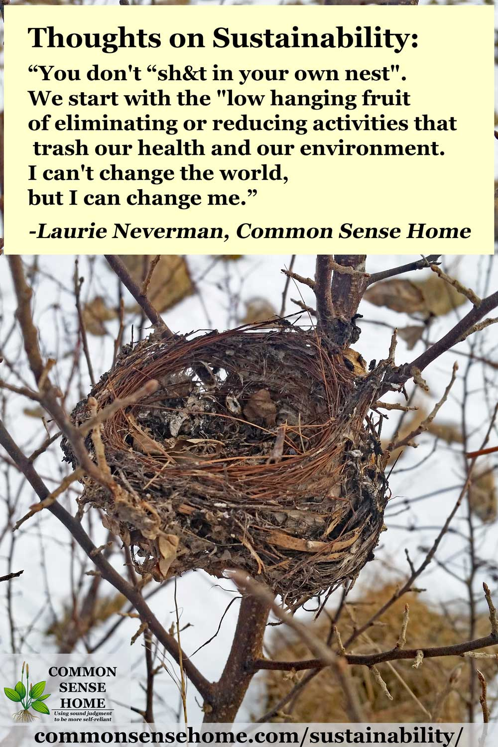 bird nest with sustainability text