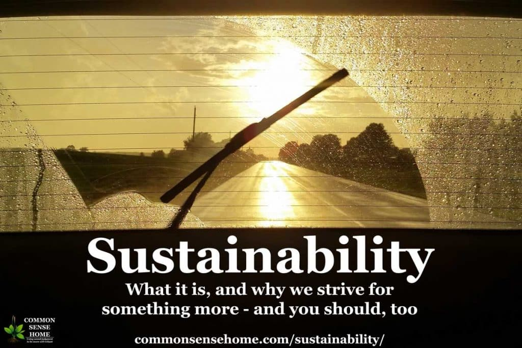 "wiper clearing rain off of window with sun shining through. Text ""Sustainability - what is it, and why we strive for something more, and you should, too"""