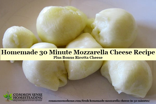 Homemade 30 Minute Mozzarella Cheese Recipe so easy the kids can do it, plus bonus ricotta and instructions for homemade string cheese.