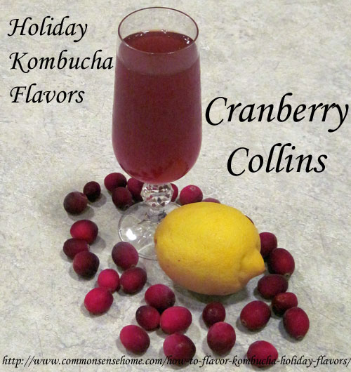 How to Flavor Kombucha - Holiday Flavors - Cranberry Collins