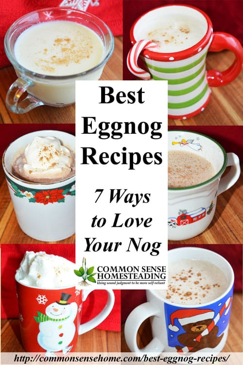 Best Eggnog Recipes #5 – Chocolate Eggnog with Cocoa