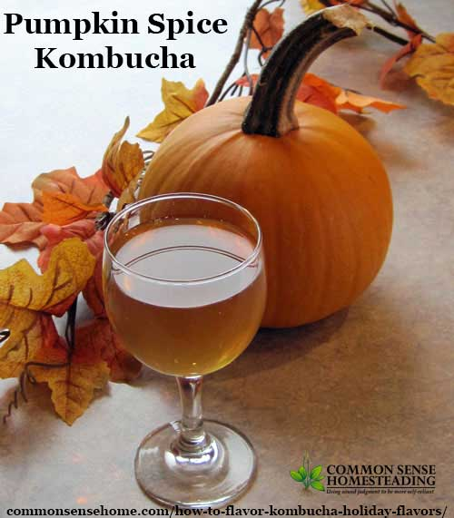 How to Flavor Kombucha - Holiday Flavors - Cranberry Collins, Pumpkin Spice, Ginger Spice, Toffee Apple, Toffee Almond, Apple Cinnamon, Cinnamon spice, more