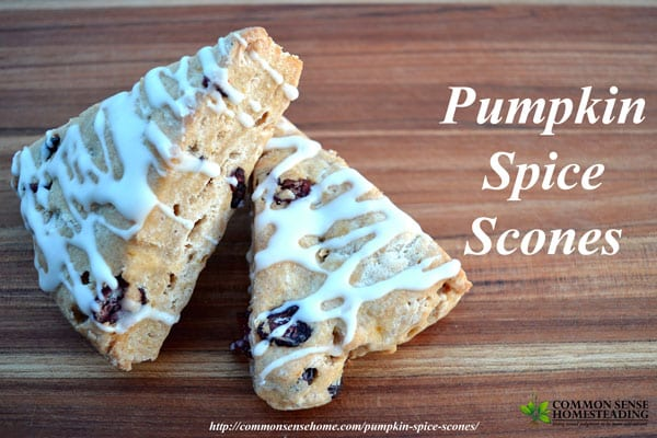 Pumpkin spice scones with cinnamon icing. Use pumpkin or squash with a hint of cream, rich butter and seasonal spices. Delicious!
