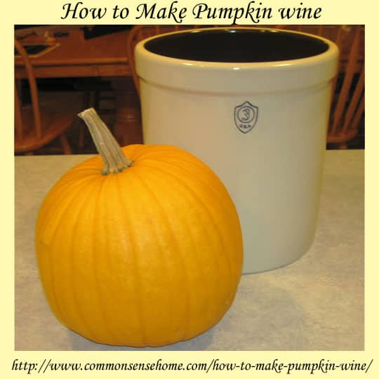 http://www.commonsensehome.com/wp-content/uploads/2011/12/how-to-make-pumpkin-wine.jpg