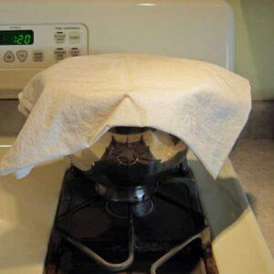 kolache dough rising