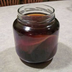 how to start a scoby