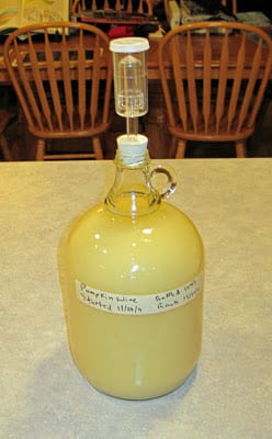 Pumpkin wine with airlock - second ferment