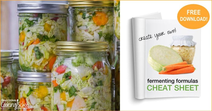 Freebie: Fermenting Formulas Cheat Sheet