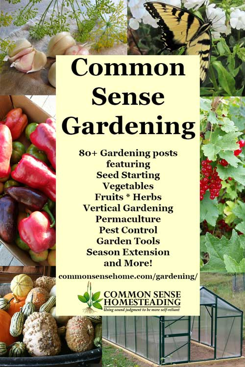 Gardening   Seed Starting And Transplants, Growing Vegetables, Herbs And  Fruit; Permaculture;
