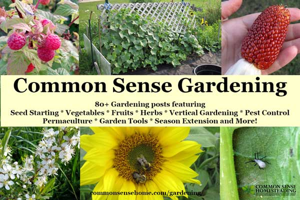 Gardening - Seed starting and transplants, growing vegetables, herbs and fruit; permaculture; vertical gardening; pest control; season extension and more.